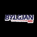 client-logo-bylgjan