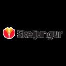 client-logo-skeljungur
